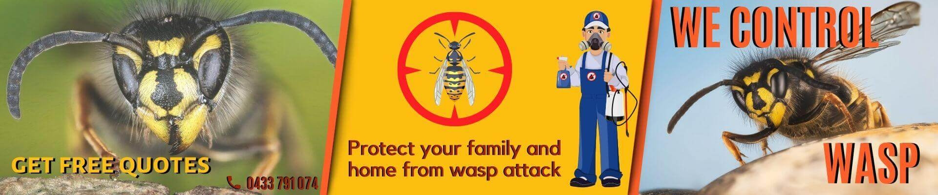Wasp Removal Melbourne (@waspremovalau) Cover Image