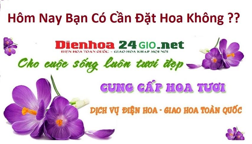 Điện Hoa 24 Giờ (@dienhoa24gioaz) Cover Image