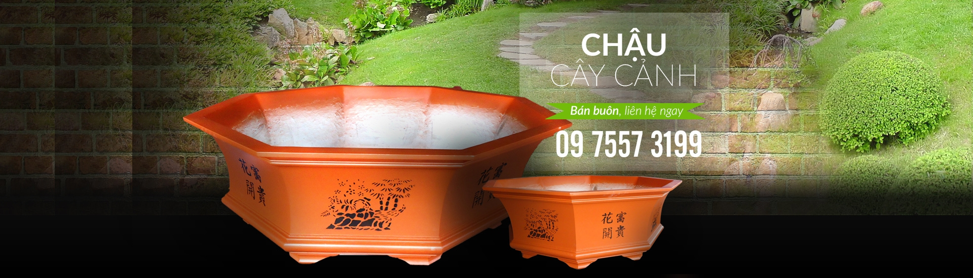 Chau Cay Canh (@chaucaycanhhcm) Cover Image