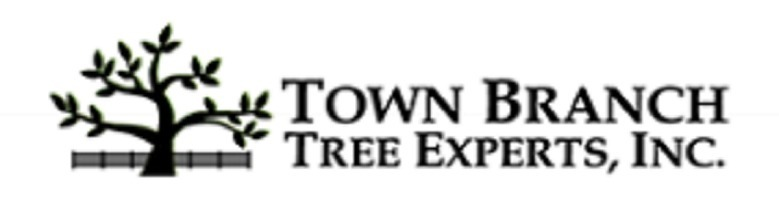 Town Branch Tree Expert (@townbranchtreeexpert) Cover Image