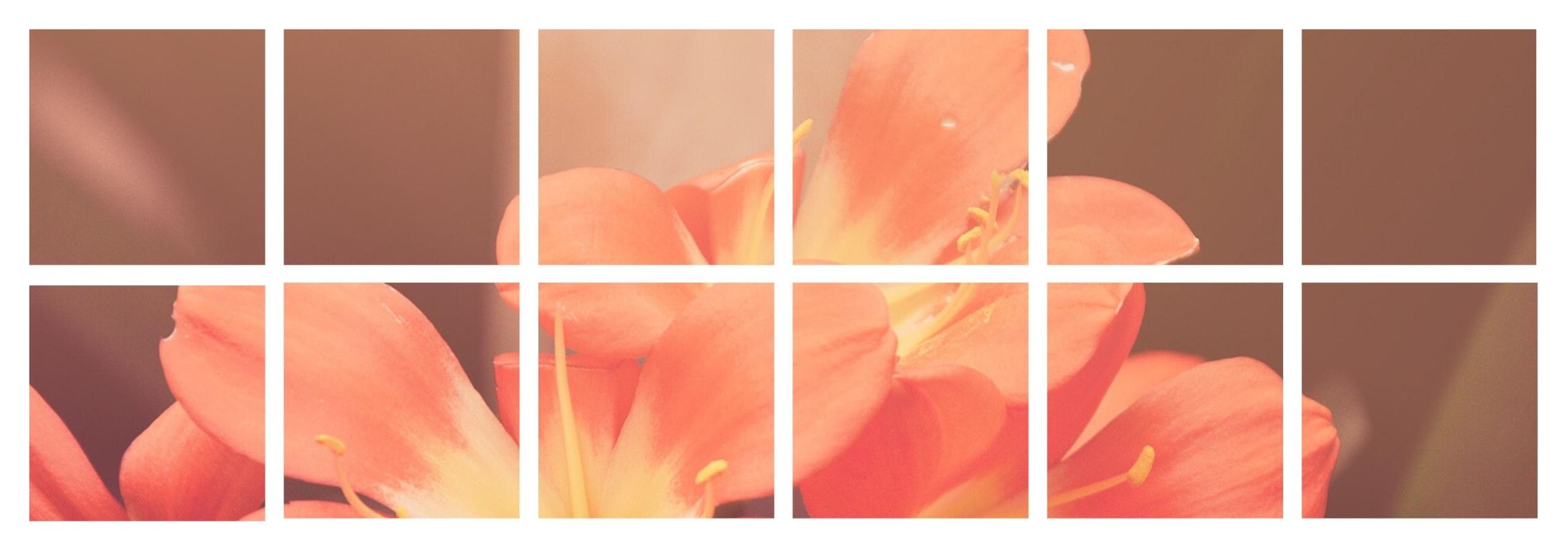 Vriona (@vriona) Cover Image