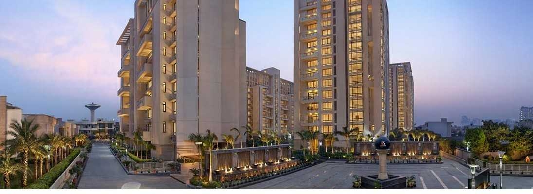 hibiscusgurgaon (@hibiscusgurgaon) Cover Image