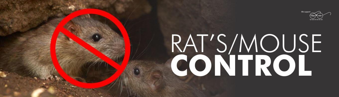 Best Choice Pest Control  (@bestchoicepestcontrol) Cover Image