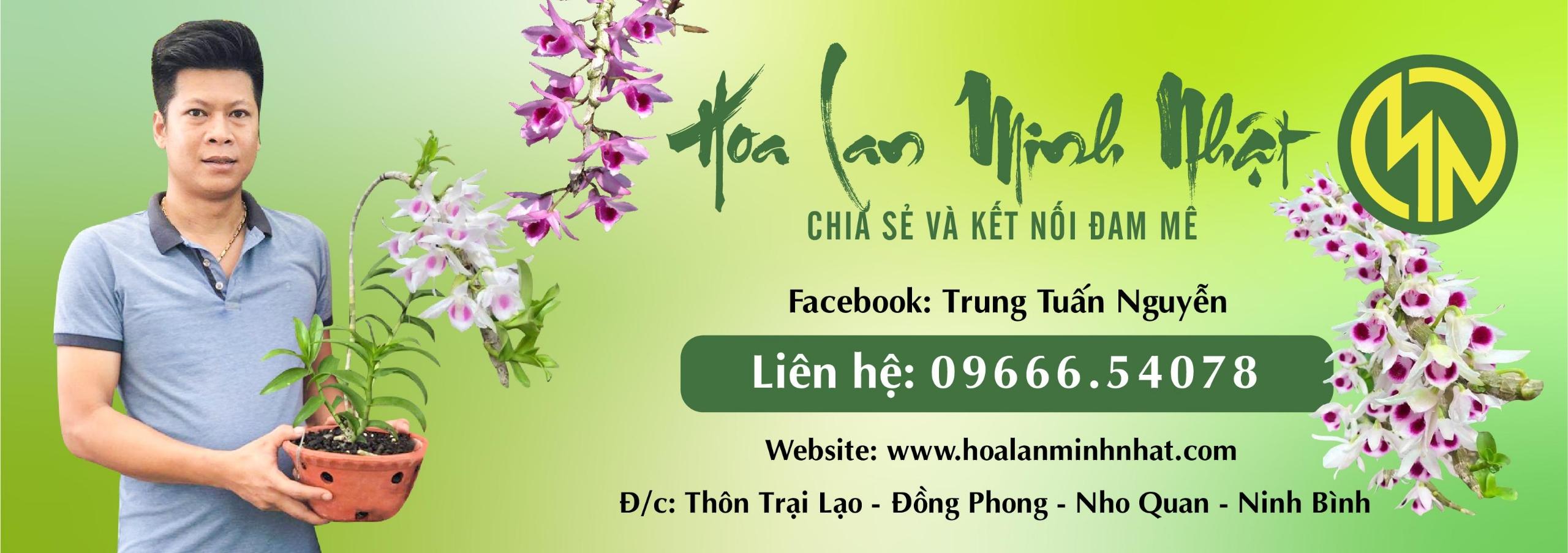 Lan Minh Nhật (@lanminhnhat) Cover Image