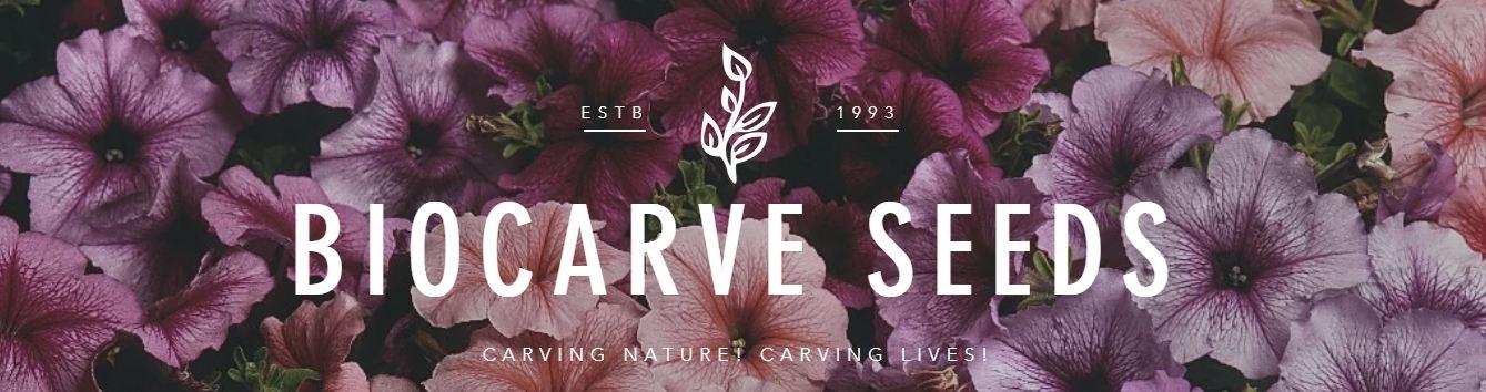 Biocarve Seeds (@biocarve) Cover Image