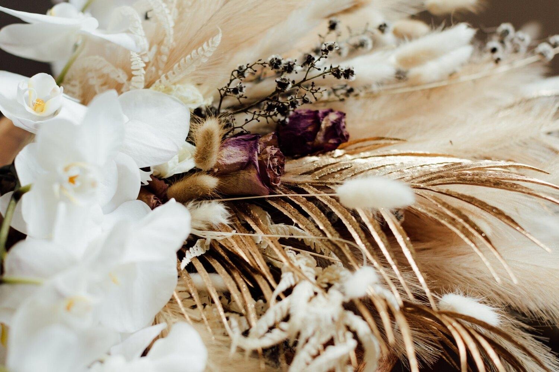 Emma Hampton Photography (@emmahamptonphotography) Cover Image