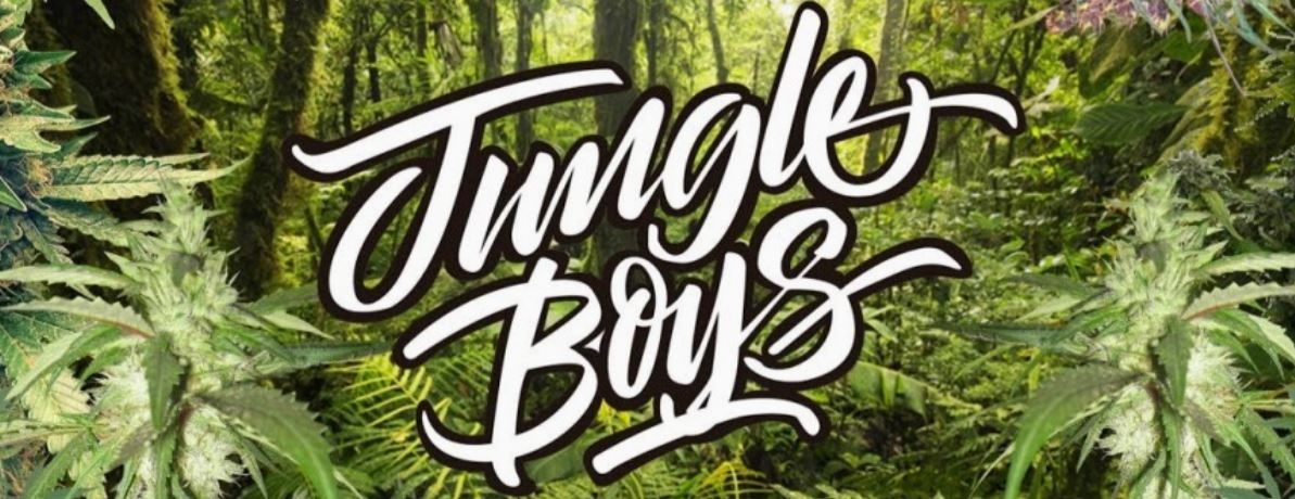 Jungle Boys (@jungleboys1) Cover Image