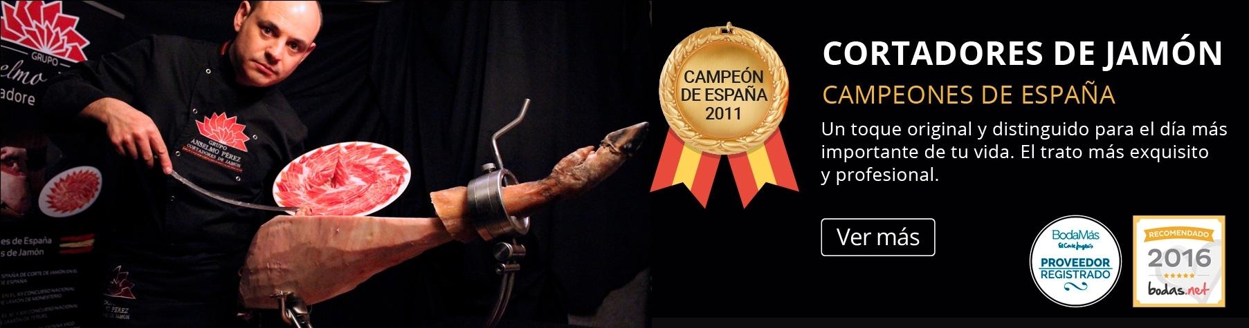 Anselmo  (@anselmoperez) Cover Image