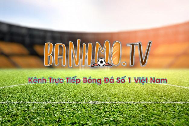 Banhmi TV (@banhmichamtv) Cover Image