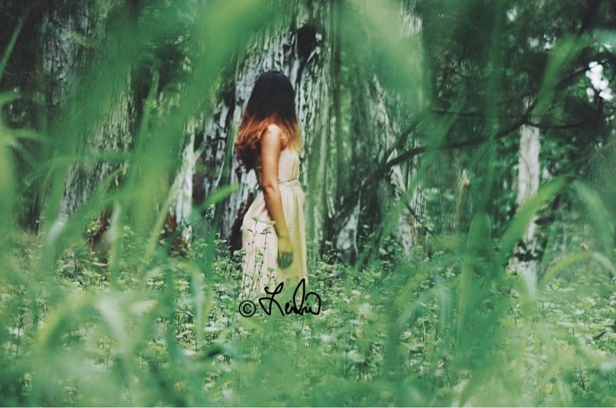 @leilina Cover Image