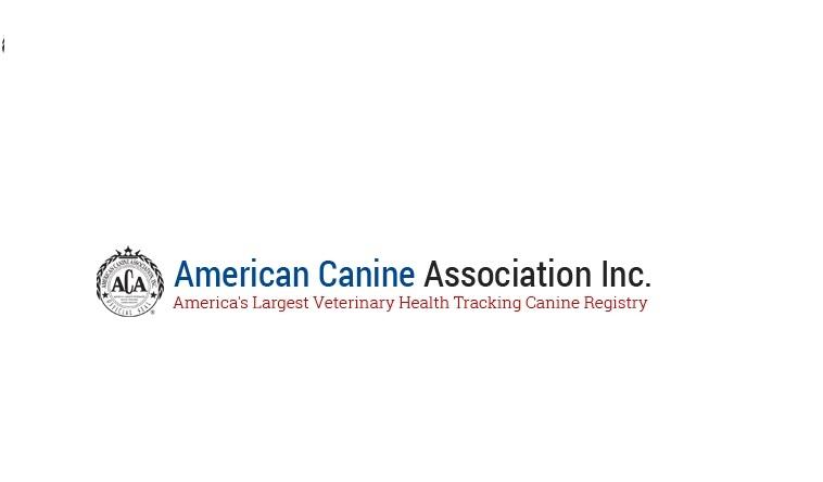 American Canine Association (@americancanineassociation) Cover Image