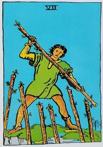 7 of wands (@predictmyfuture12) Cover Image