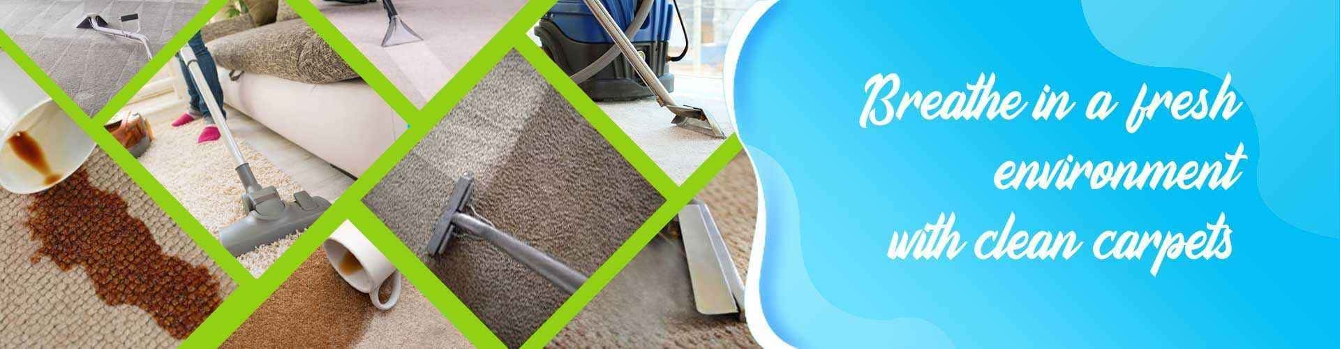 Professional Rug Cleaning Perth (@spotlesscarpetsteams) Cover Image
