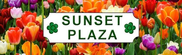 Sunset Plaza (@sunsetplaza) Cover Image