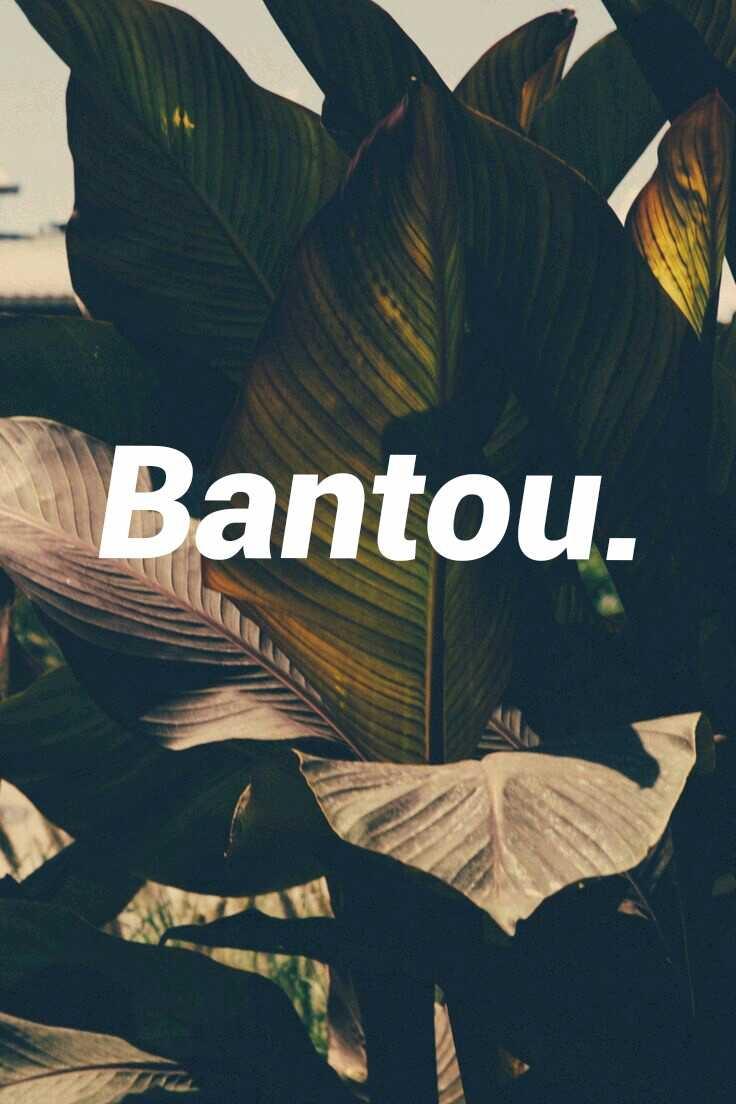 (@parakletos) Cover Image