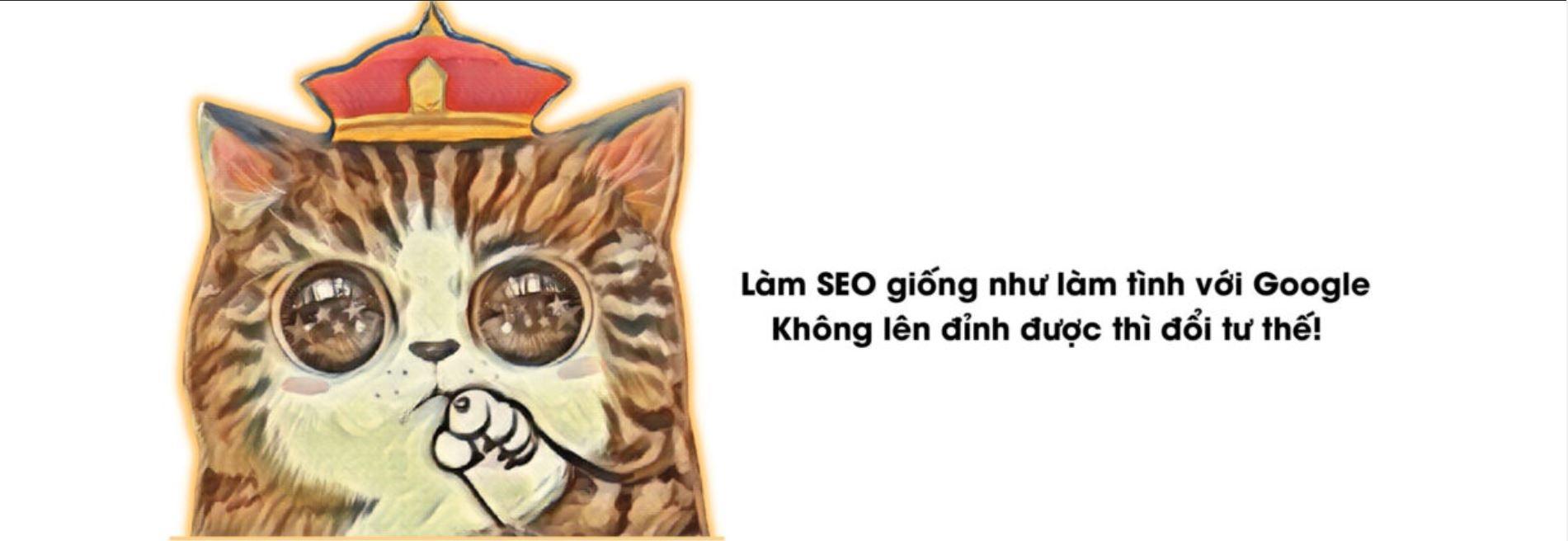 SEO (@seo69) Cover Image