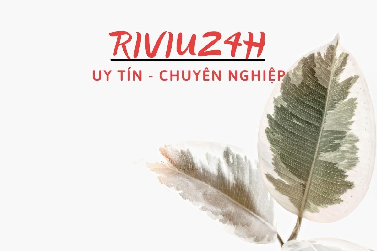 Riviu24 (@riviu24h) Cover Image