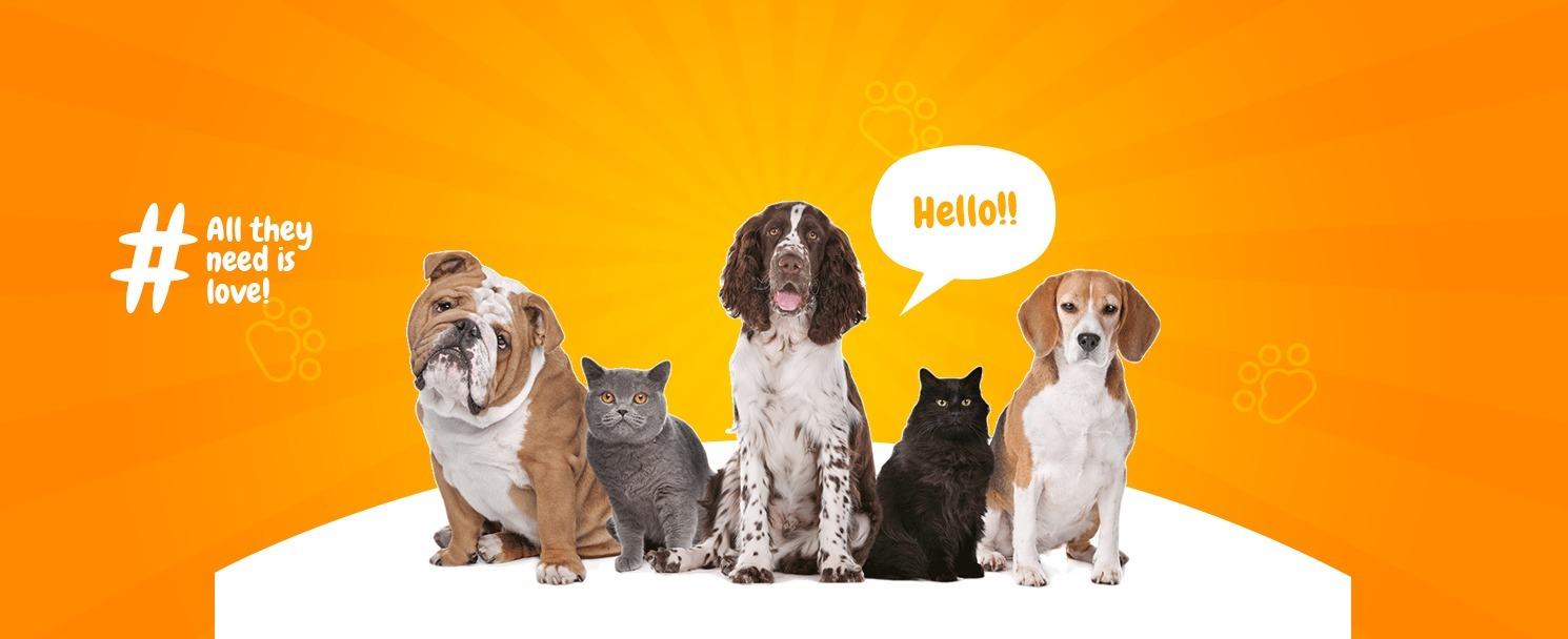 Pets (@petshome) Cover Image