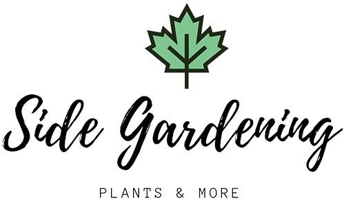 Side Gardening (@sidegardening) Cover Image