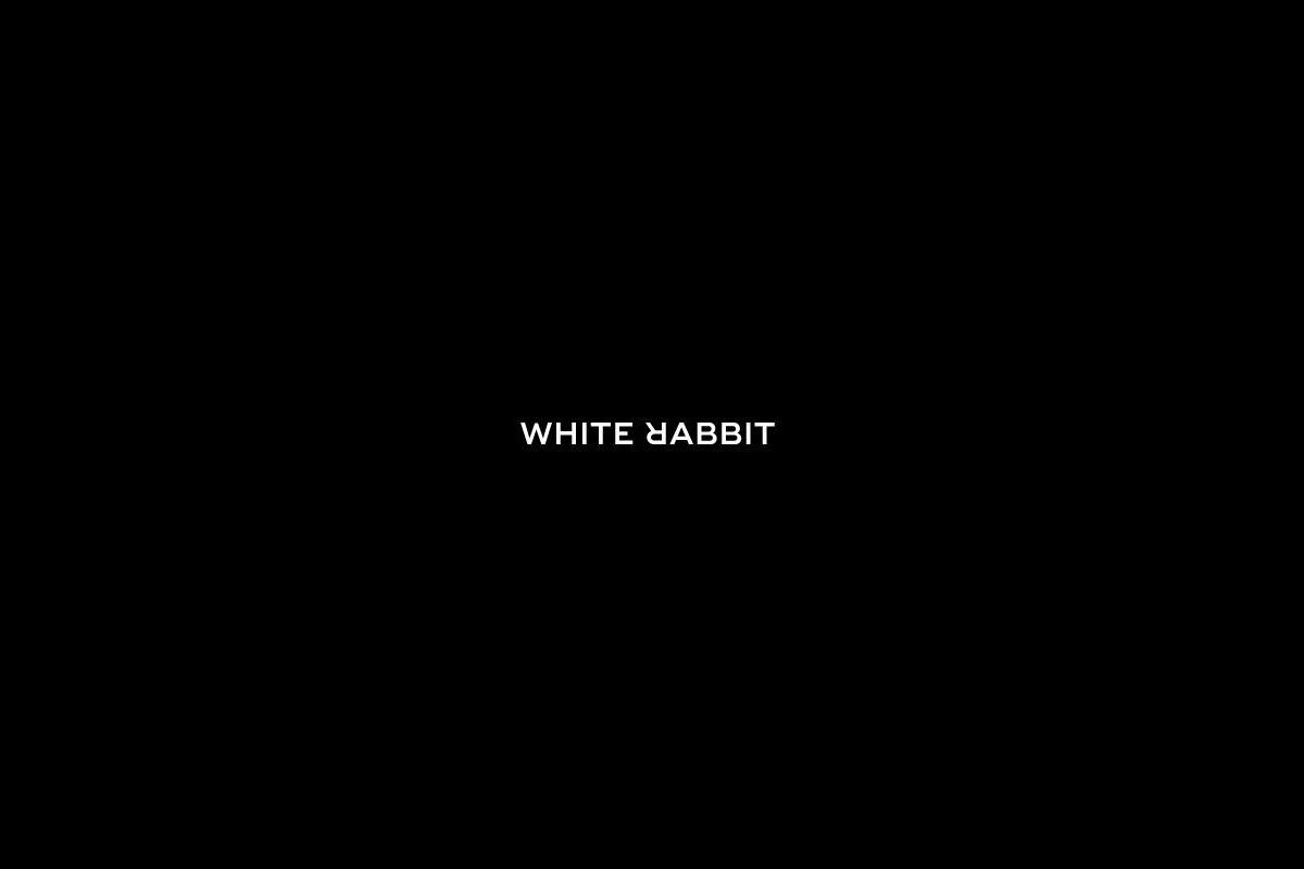 White Rabbit (@flynnellery123) Cover Image