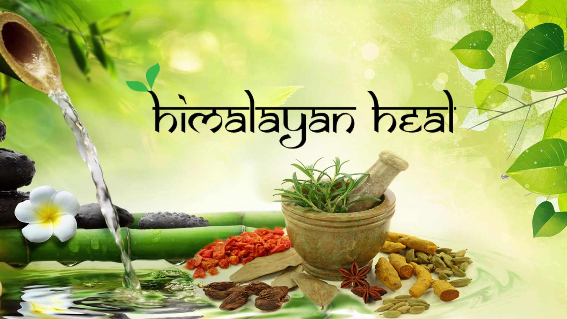 Himalayan Heal (@underhim) Cover Image