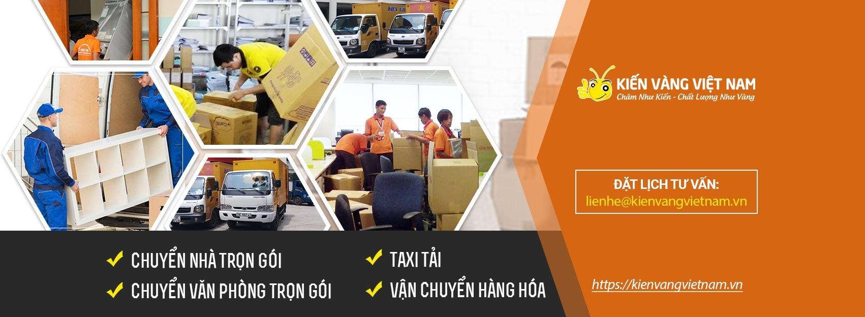 Kiến vàng Việt Nam (@kienvangvietnam) Cover Image