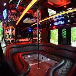 Party Bus Toronto VIP (@partybusvip) Cover Image
