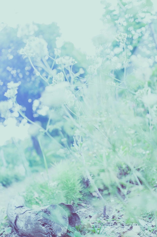 Takuya Matsuyama (@tky) Cover Image