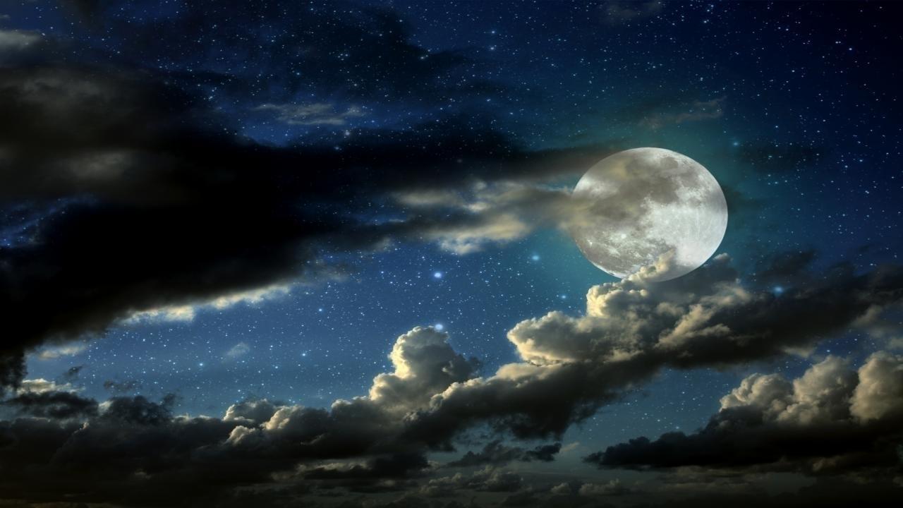 Milk and Moonlight (@milkandmoonlight) Cover Image